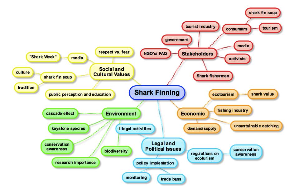 Mental map of the shark management problem