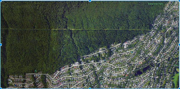 Figure 7 - The upper limits of West Vancouver show the striking border between suburban neighbourhoods and natural wildlife habitat. Google maps provided by Map Data Copyright 2015 Google.
